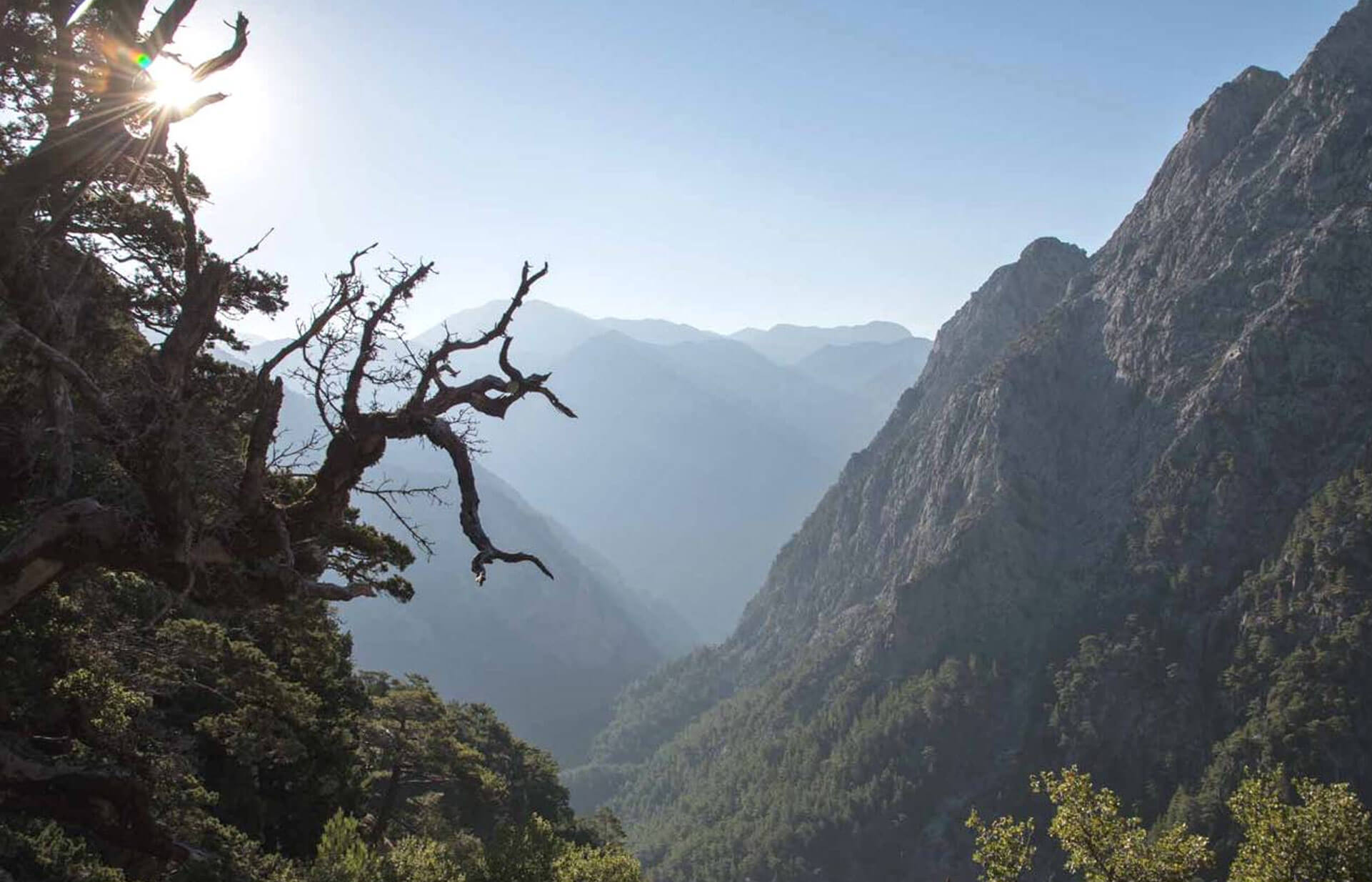 Samaria Gorge Zen Group